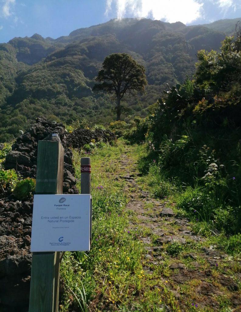 Parque Rural de Frontera - La naturaleza de El Hierro