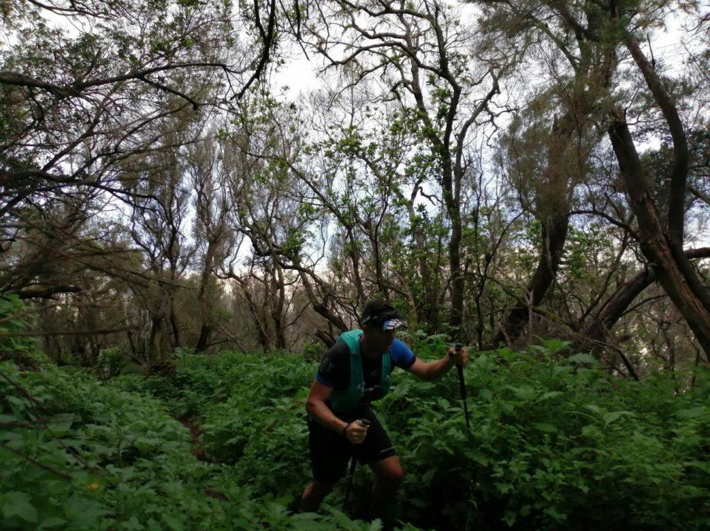 Salida Trail en El Hierro - Entrenando en el Hierro